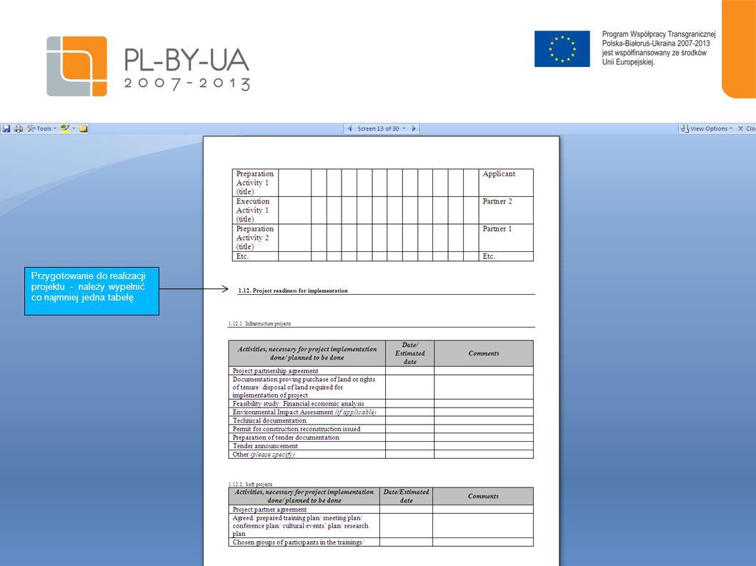 Przygotowanie do realizacji projektu - należy wypełnić co najmniej jedna tabelę