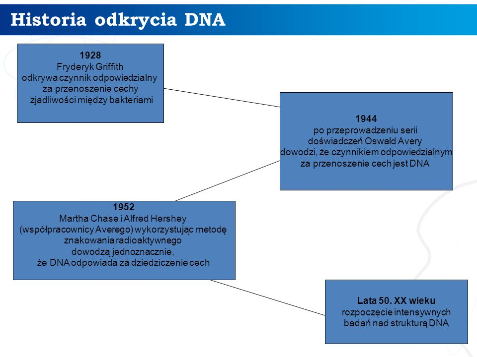 Historia odkrycia DNA 1928 Fryderyk Griffith