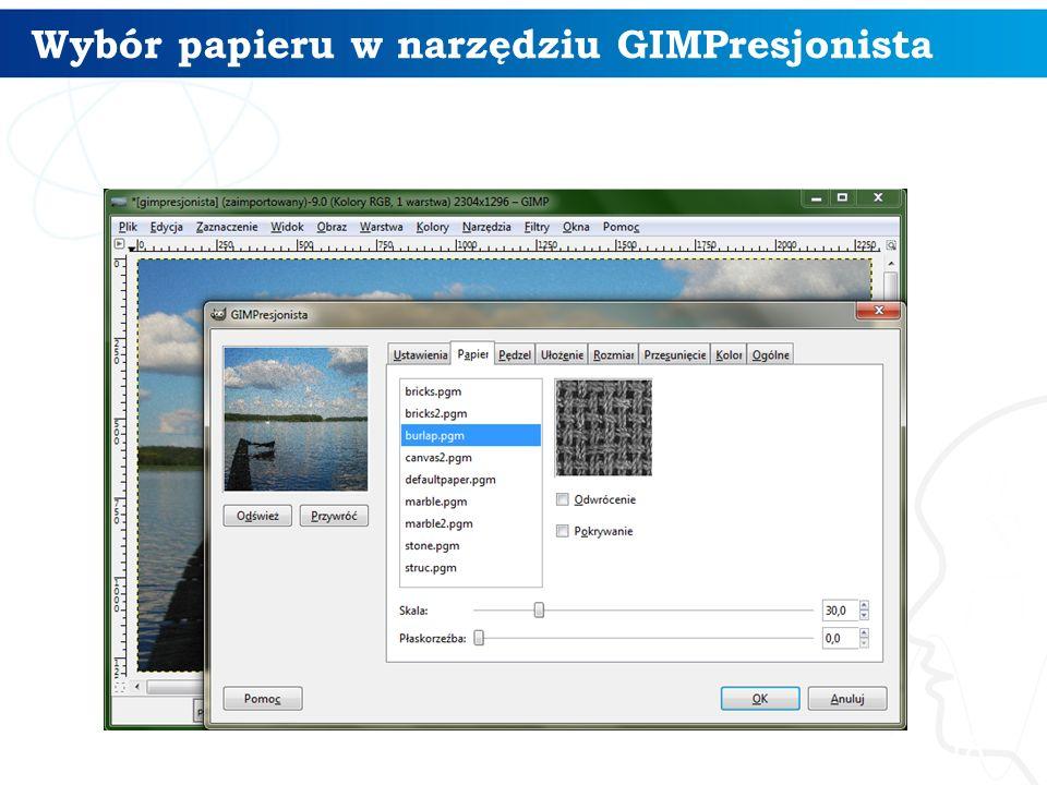 Wybór papieru w narzędziu GIMPresjonista