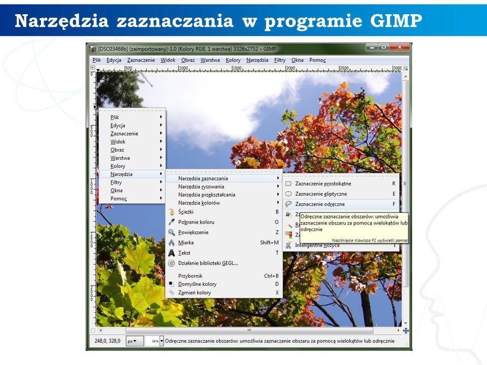 Narzędzia zaznaczania w programie GIMP