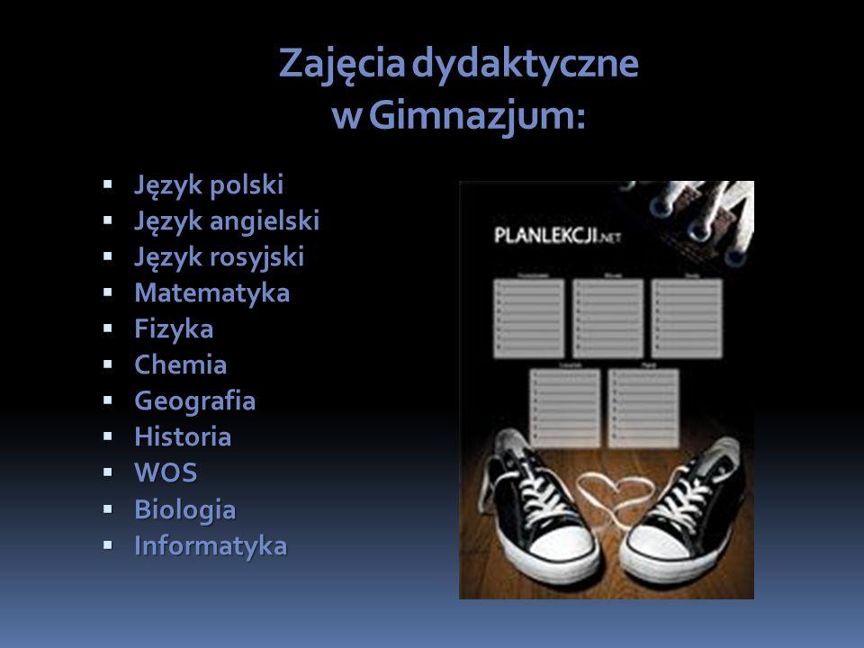Zajęcia dydaktyczne w Gimnazjum: