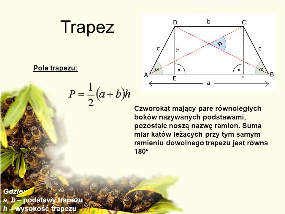 Trapez Pole trapezu: