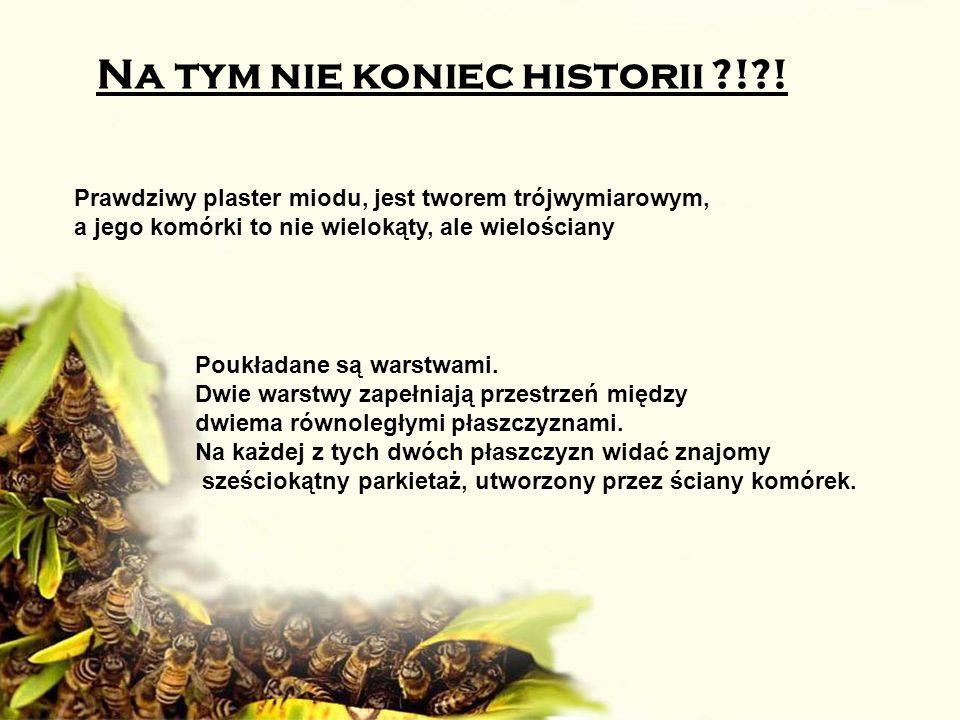 Na tym nie koniec historii ! !