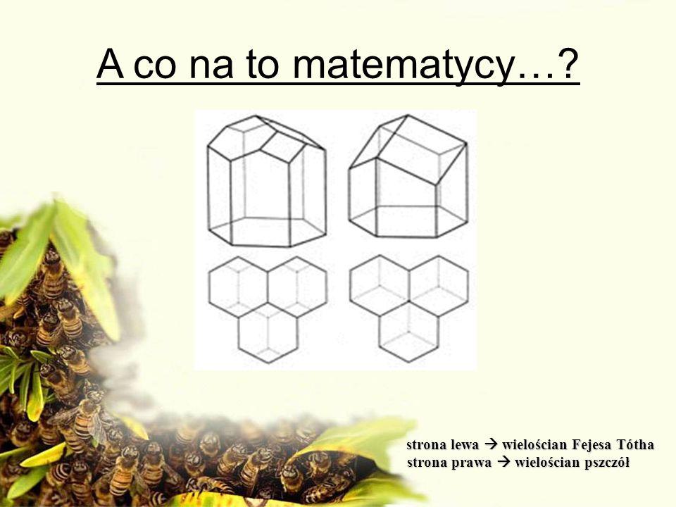 A co na to matematycy… strona prawa  wielościan pszczół