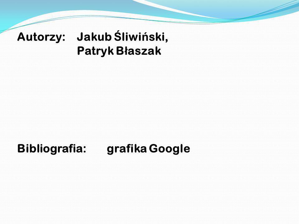 Autorzy: Jakub Śliwiński,
