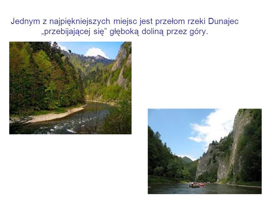 """Jednym z najpiękniejszych miejsc jest przełom rzeki Dunajec """"przebijającej się głęboką doliną przez góry."""