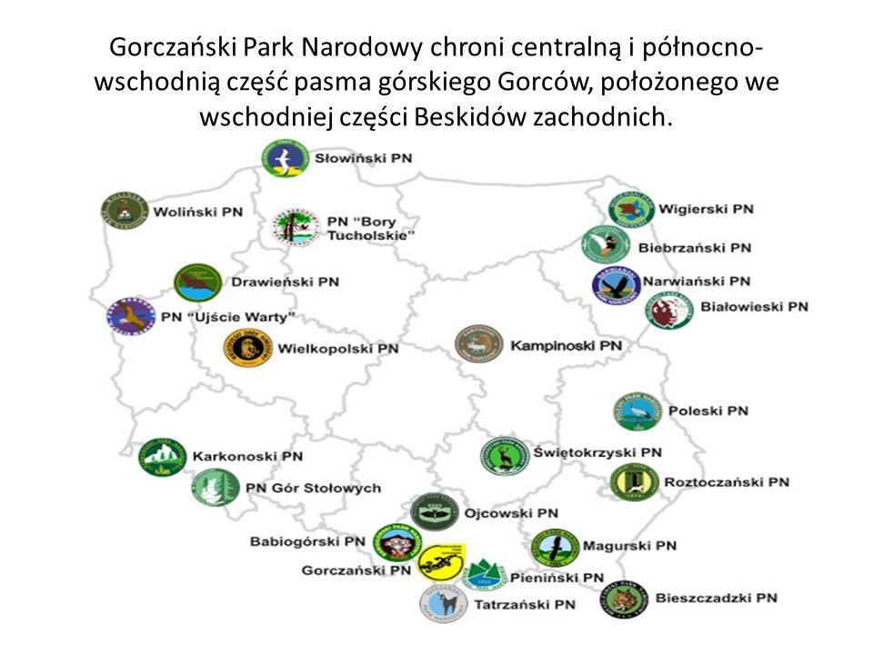 Gorczański Park Narodowy chroni centralną i północno-wschodnią część pasma górskiego Gorców, położonego we wschodniej części Beskidów zachodnich.