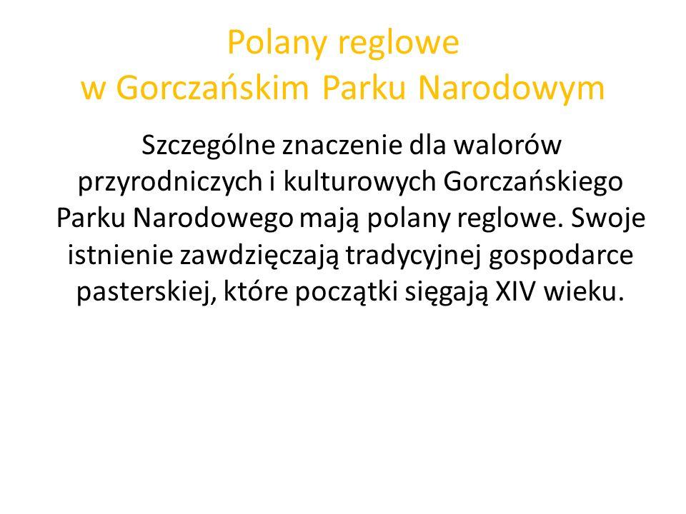 Polany reglowe w Gorczańskim Parku Narodowym