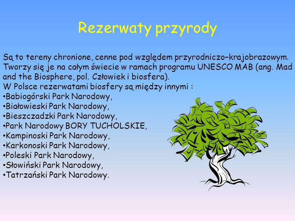 Rezerwaty przyrody Są to tereny chronione, cenne pod względem przyrodniczo–krajobrazowym.