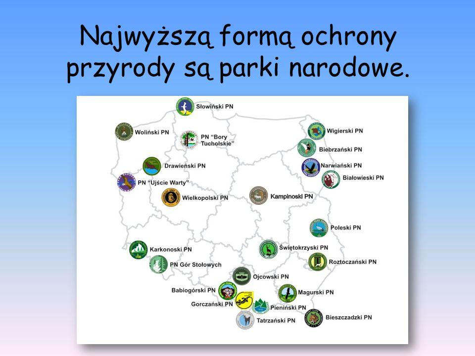 Najwyższą formą ochrony przyrody są parki narodowe.