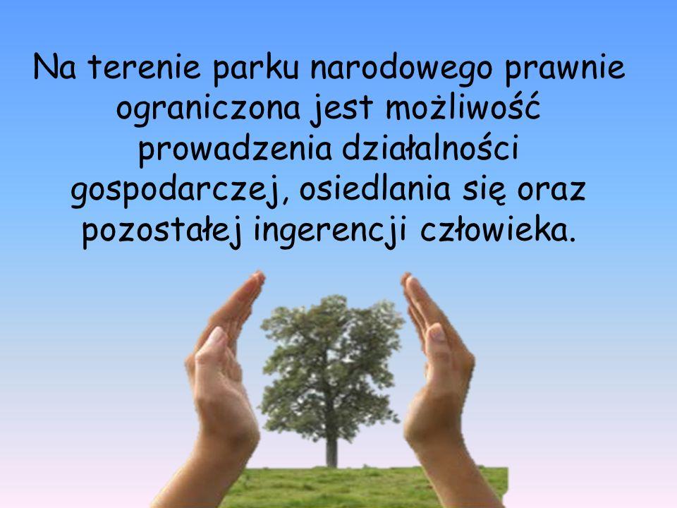 Na terenie parku narodowego prawnie ograniczona jest możliwość prowadzenia działalności gospodarczej, osiedlania się oraz pozostałej ingerencji człowieka.