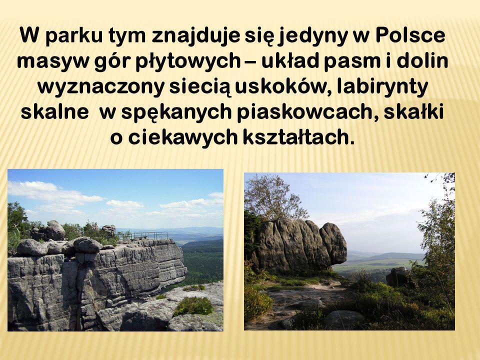 W parku tym znajduje się jedyny w Polsce masyw gór płytowych – układ pasm i dolin wyznaczony siecią uskoków, labirynty skalne w spękanych piaskowcach, skałki o ciekawych kształtach.