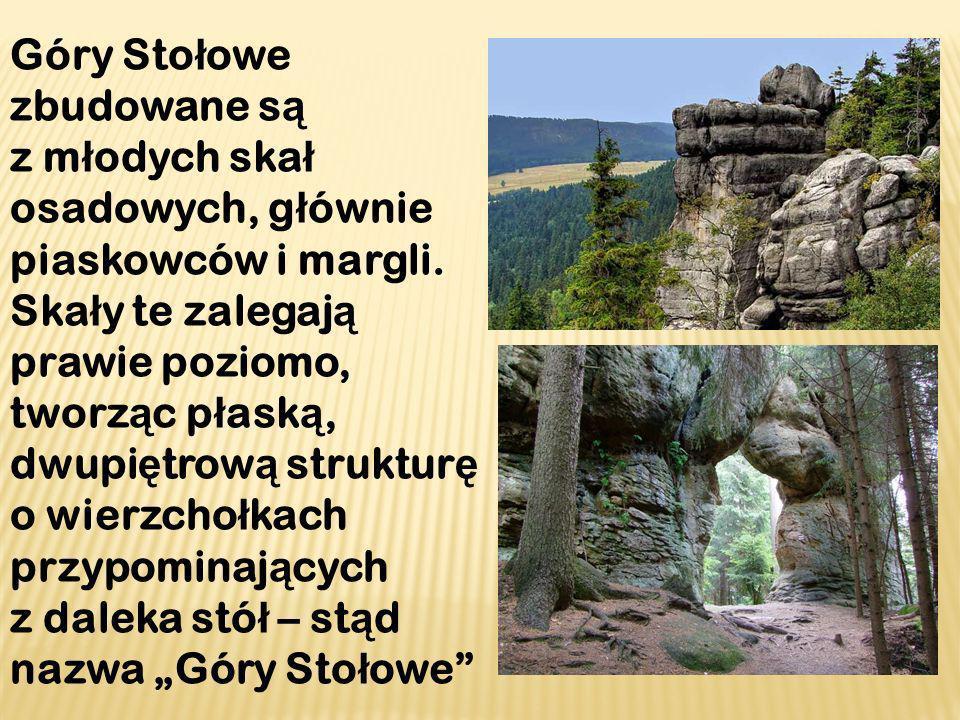 Góry Stołowe zbudowane są z młodych skał osadowych, głównie piaskowców i margli.