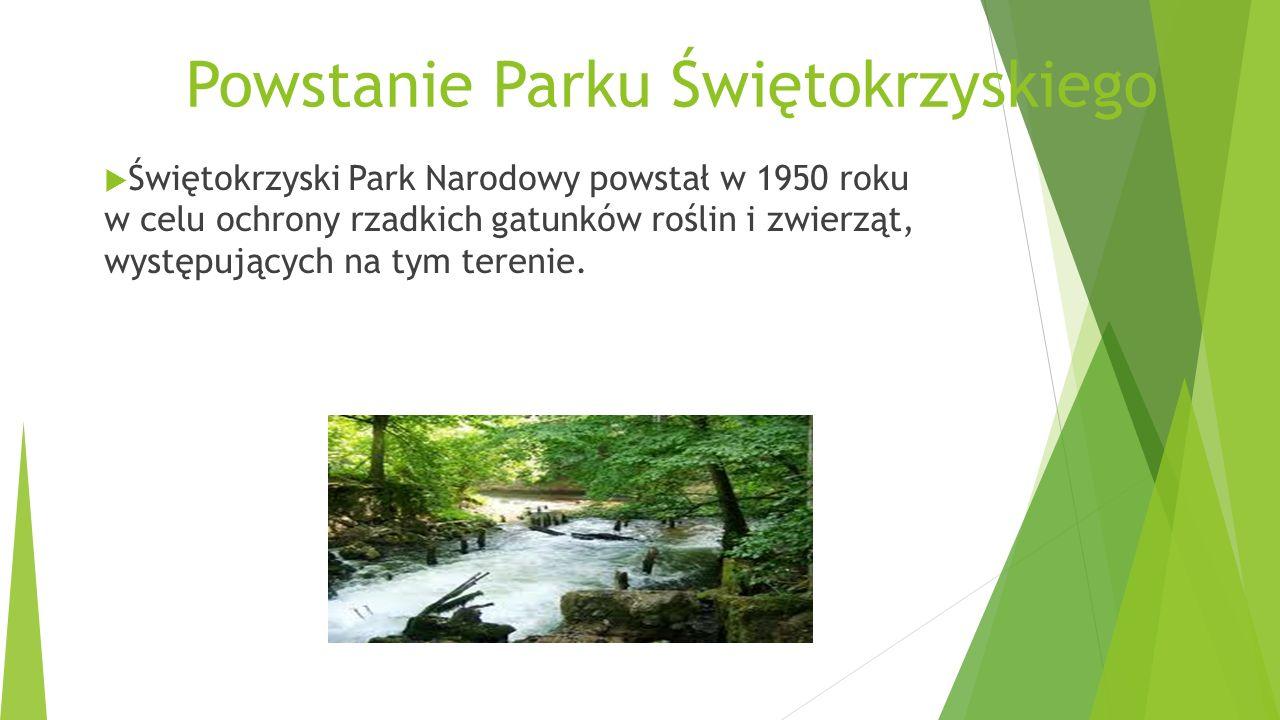 Powstanie Parku Świętokrzyskiego