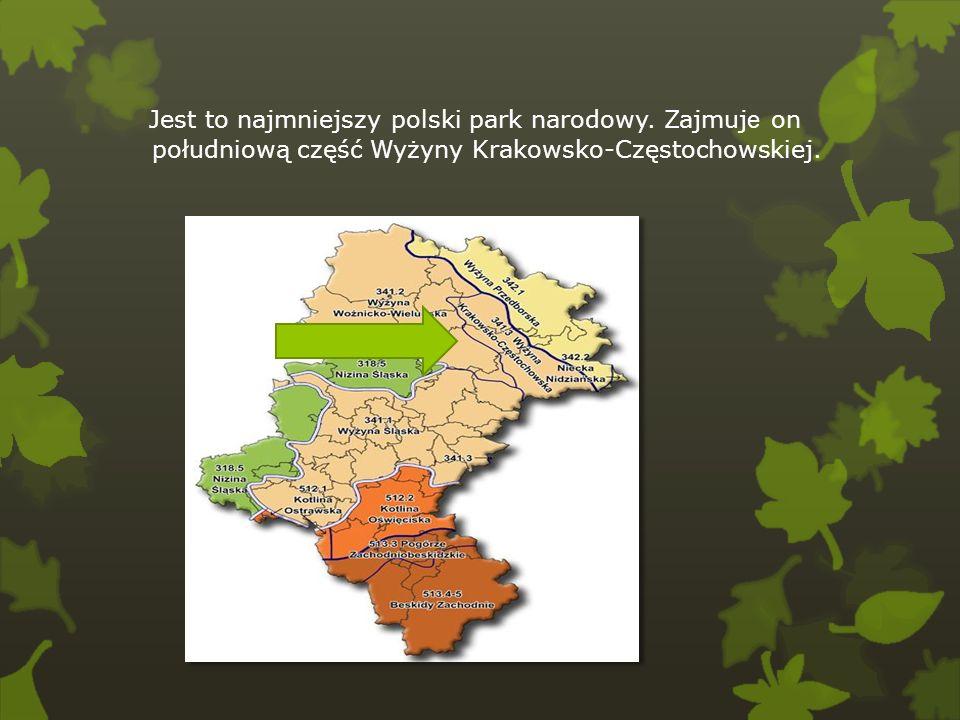 Jest to najmniejszy polski park narodowy