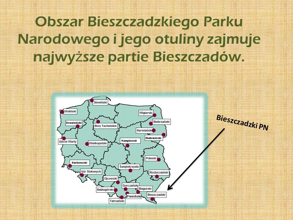 Obszar Bieszczadzkiego Parku Narodowego i jego otuliny zajmuje najwyższe partie Bieszczadów.