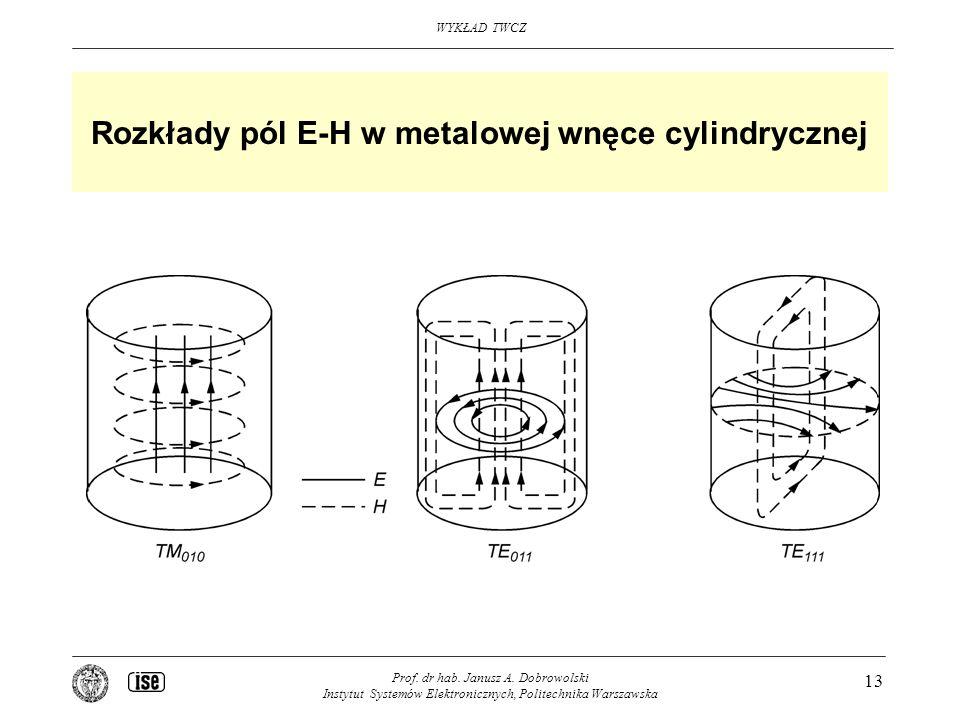 Rozkłady pól E-H w metalowej wnęce cylindrycznej