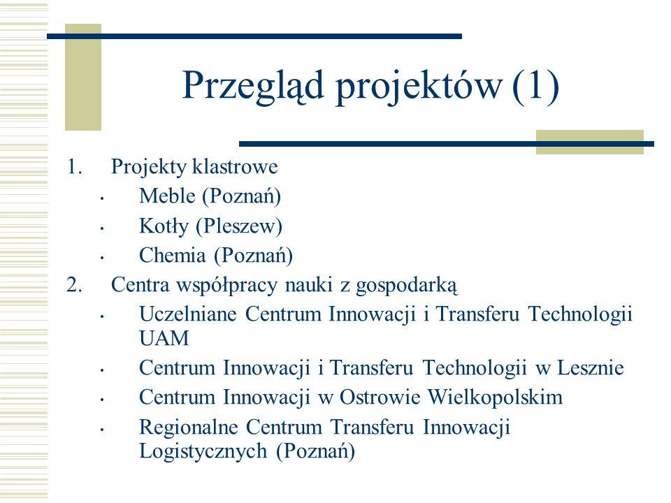 Przegląd projektów (1) Projekty klastrowe Meble (Poznań)