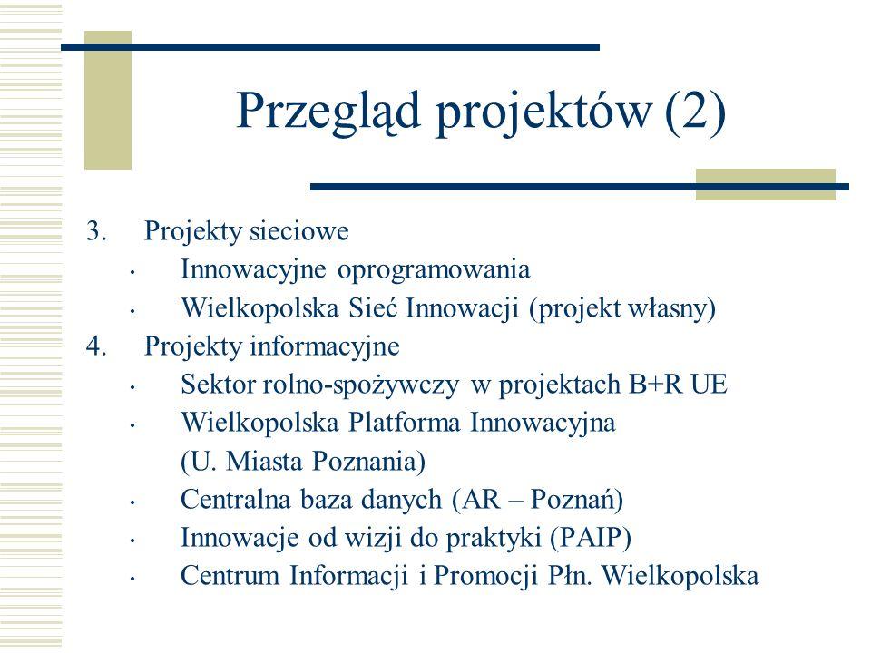 Przegląd projektów (2) Projekty sieciowe Innowacyjne oprogramowania