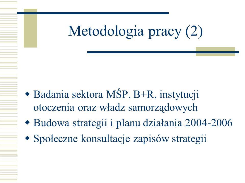 Metodologia pracy (2) Badania sektora MŚP, B+R, instytucji otoczenia oraz władz samorządowych. Budowa strategii i planu działania 2004-2006.