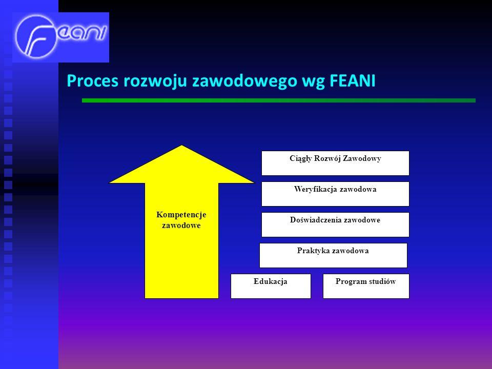 Proces rozwoju zawodowego wg FEANI