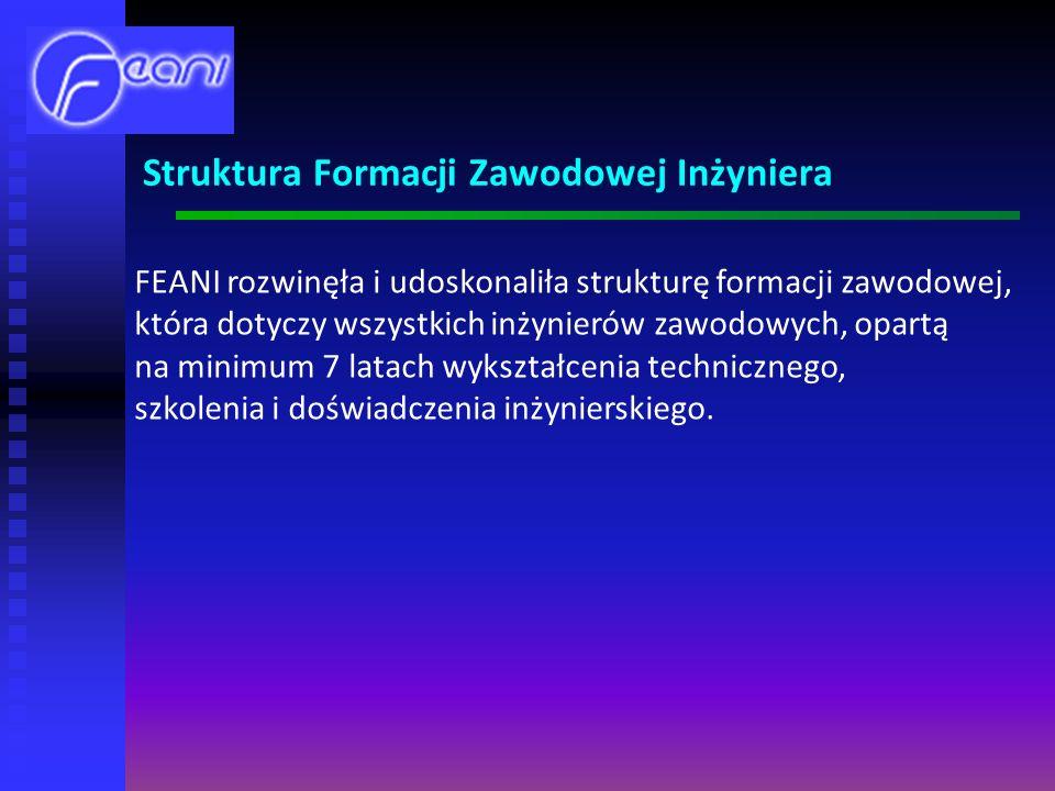 Struktura Formacji Zawodowej Inżyniera