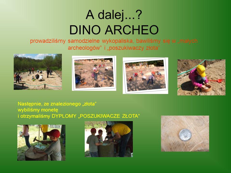 """A dalej... DINO ARCHEO prowadziliśmy samodzielne wykopaliska, bawiliśmy się w """"małych archeologów i """"poszukiwaczy złota"""