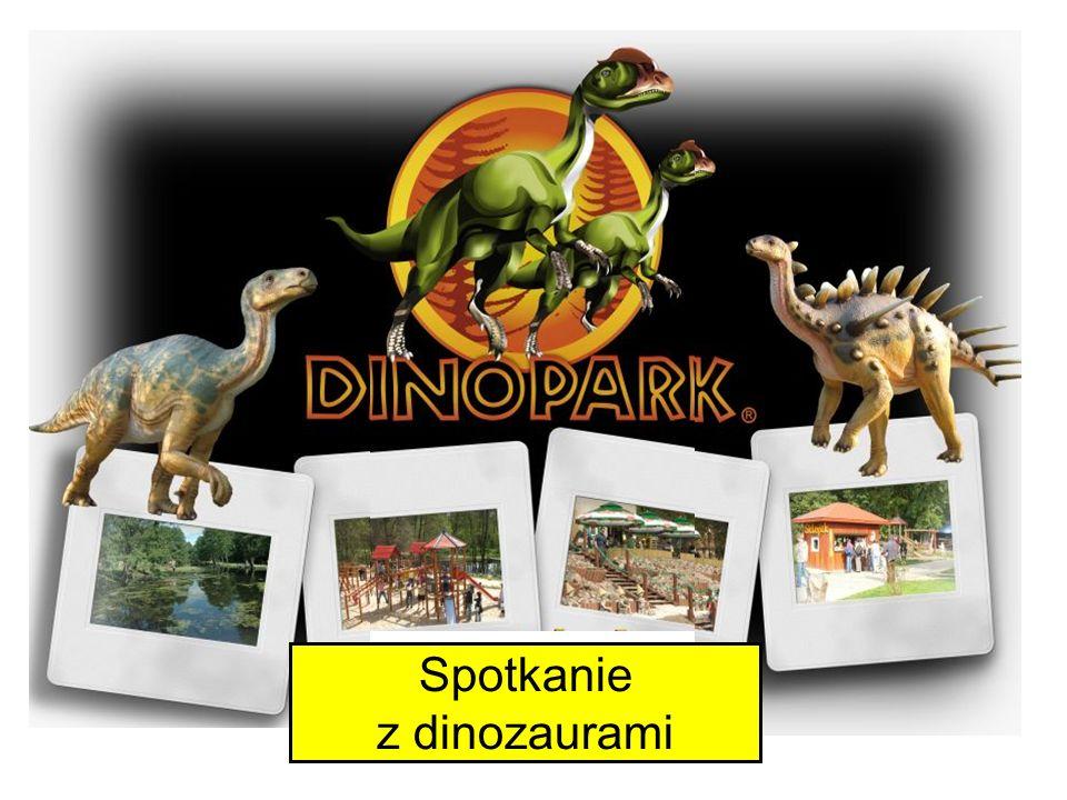 Spotkanie z dinozaurami