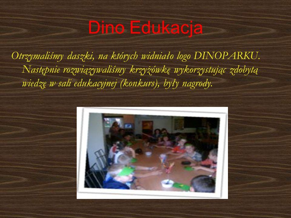 Dino Edukacja
