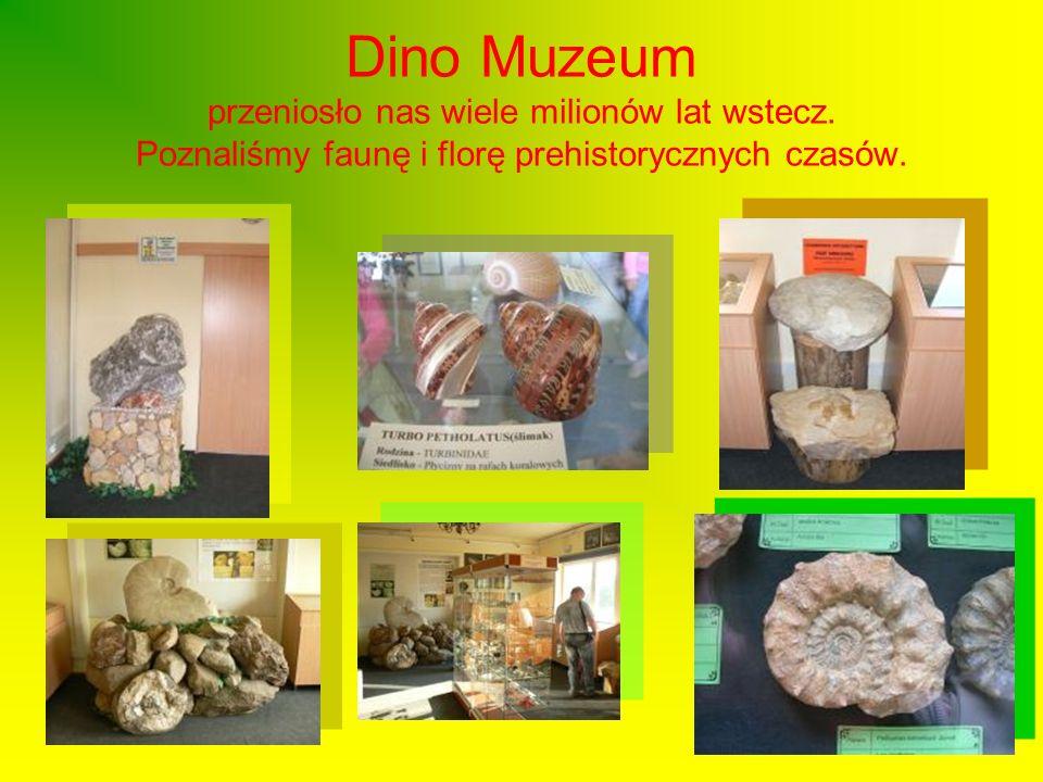 Dino Muzeum przeniosło nas wiele milionów lat wstecz