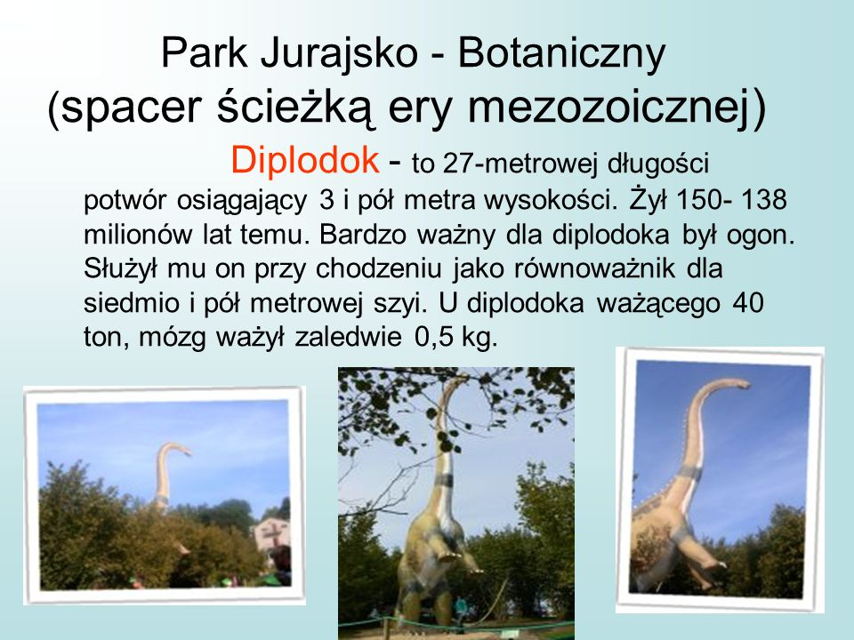 Park Jurajsko - Botaniczny (spacer ścieżką ery mezozoicznej)