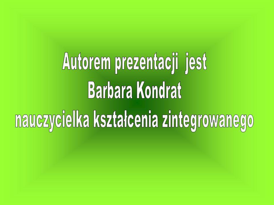 Autorem prezentacji jest Barbara Kondrat