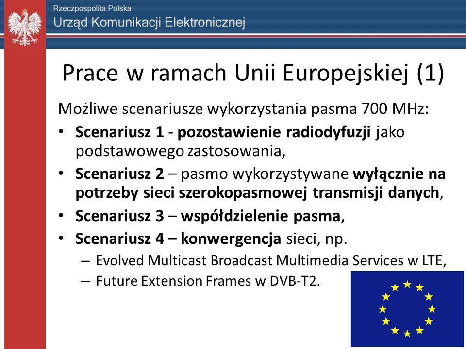 Prace w ramach Unii Europejskiej (1)
