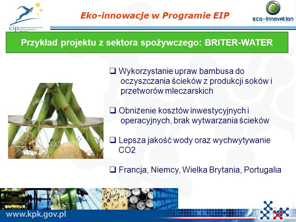 Przykład projektu z sektora spożywczego: BRITER-WATER
