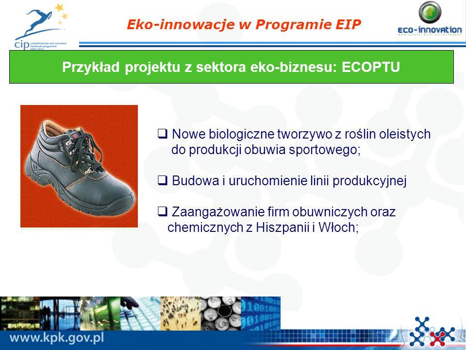 Przykład projektu z sektora eko-biznesu: ECOPTU
