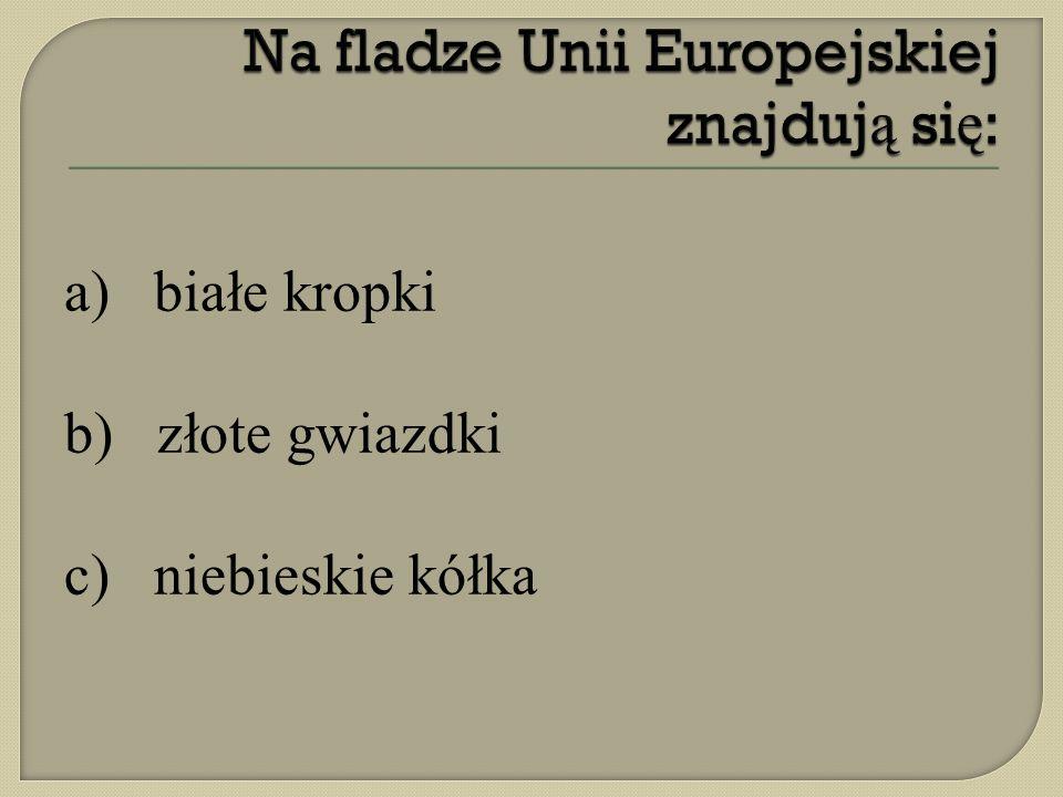 Na fladze Unii Europejskiej znajdują się: