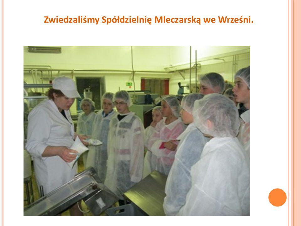 Zwiedzaliśmy Spółdzielnię Mleczarską we Wrześni.