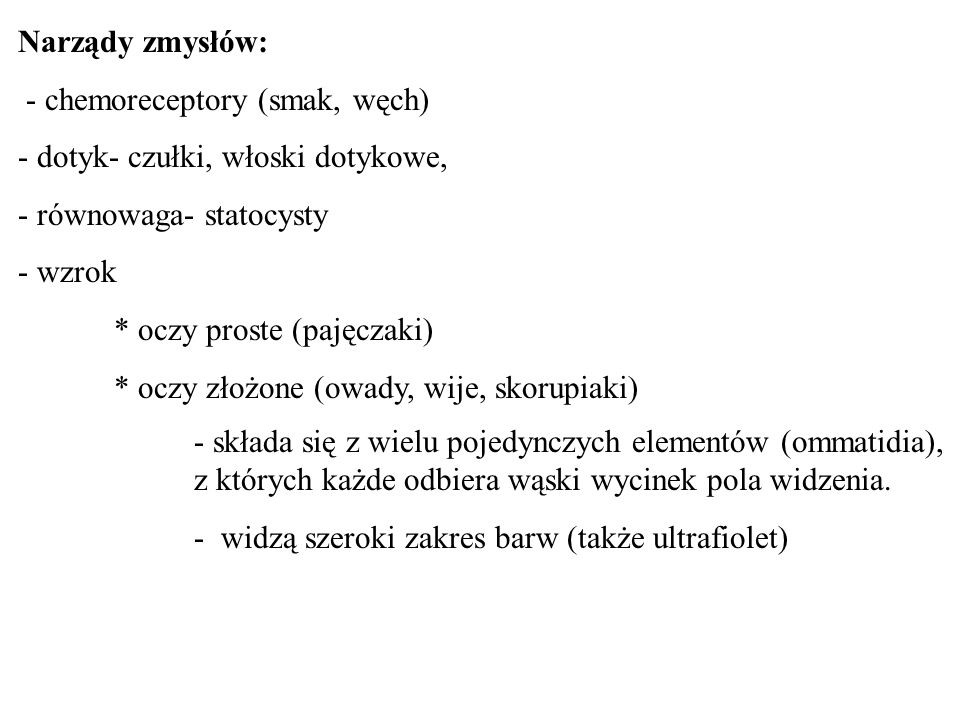 Narządy zmysłów: - chemoreceptory (smak, węch) - dotyk- czułki, włoski dotykowe, - równowaga- statocysty.