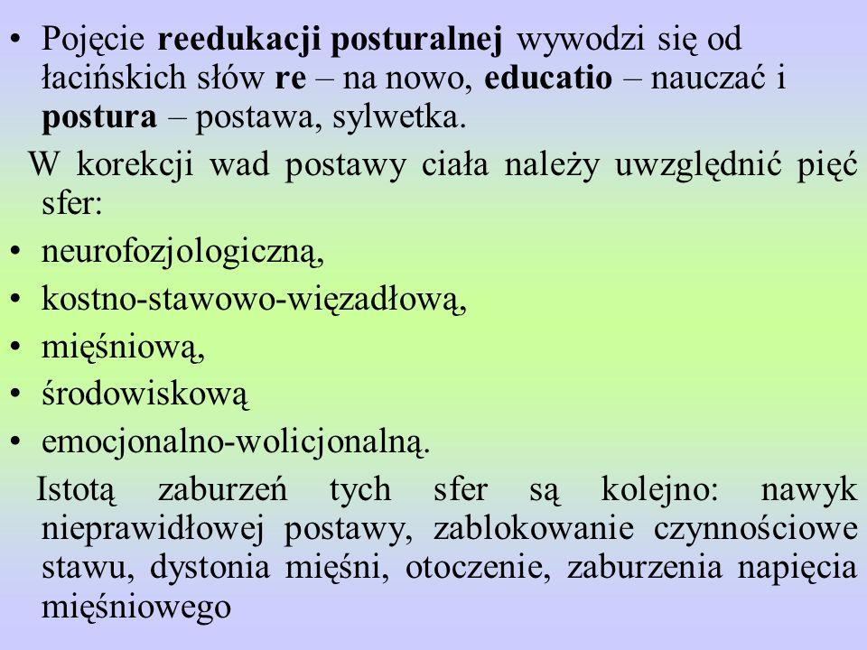Pojęcie reedukacji posturalnej wywodzi się od łacińskich słów re – na nowo, educatio – nauczać i postura – postawa, sylwetka.