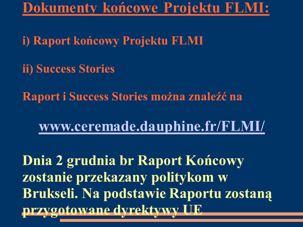 Dokumenty końcowe Projektu FLMI: