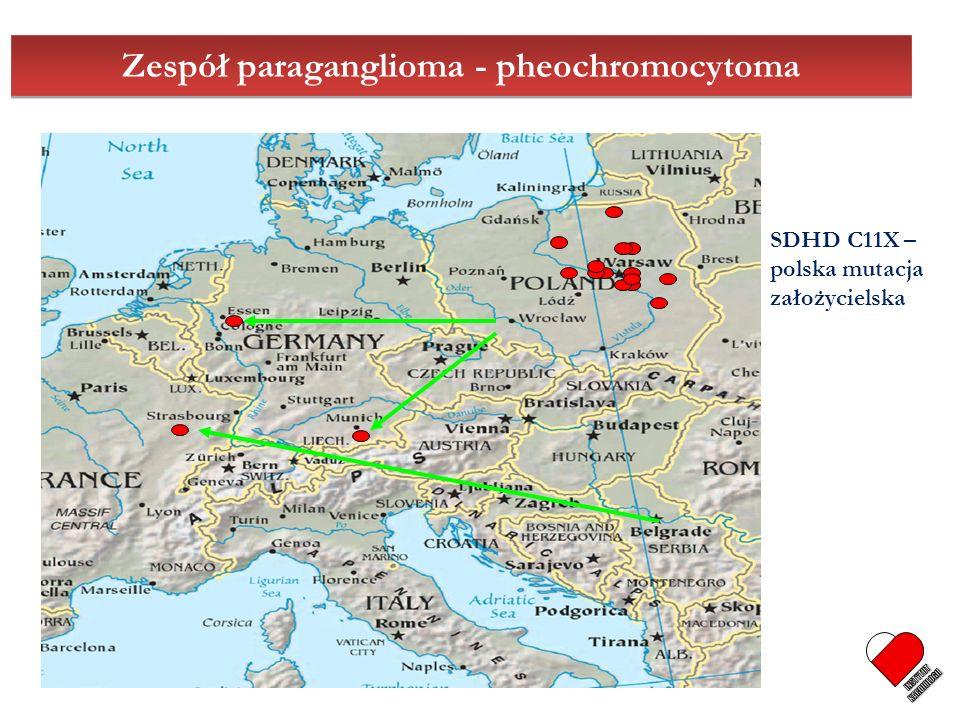 Zespół paraganglioma - pheochromocytoma