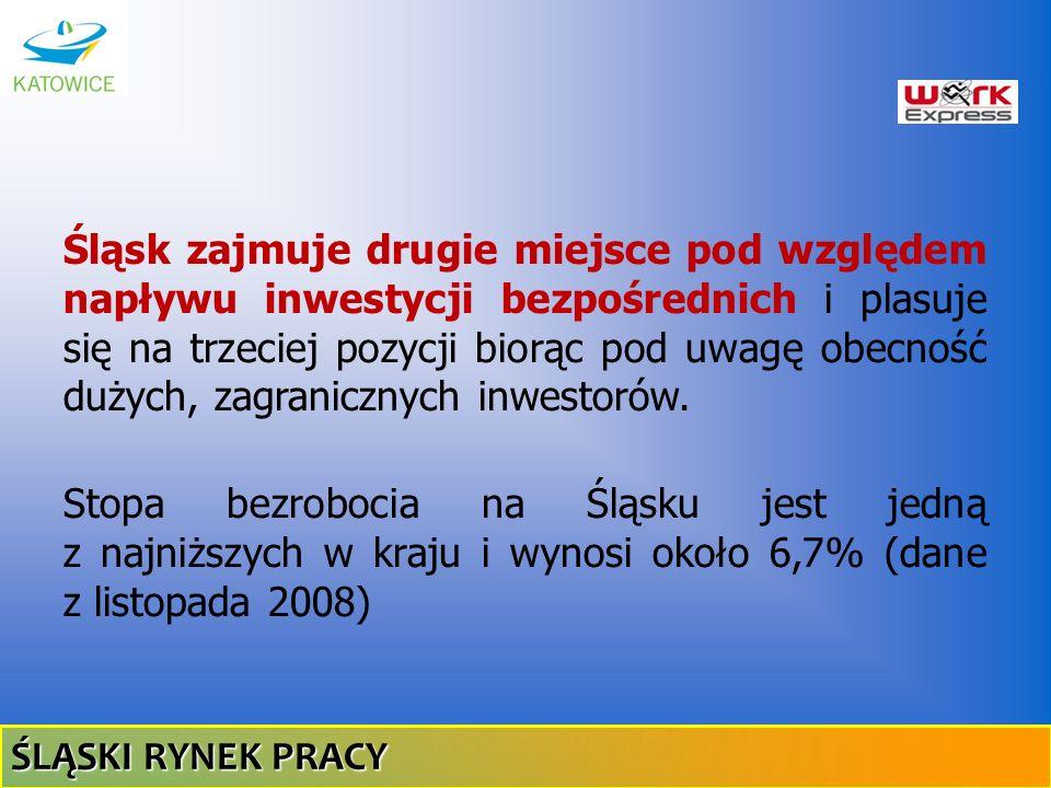 Śląsk zajmuje drugie miejsce pod względem napływu inwestycji bezpośrednich i plasuje się na trzeciej pozycji biorąc pod uwagę obecność dużych, zagranicznych inwestorów.