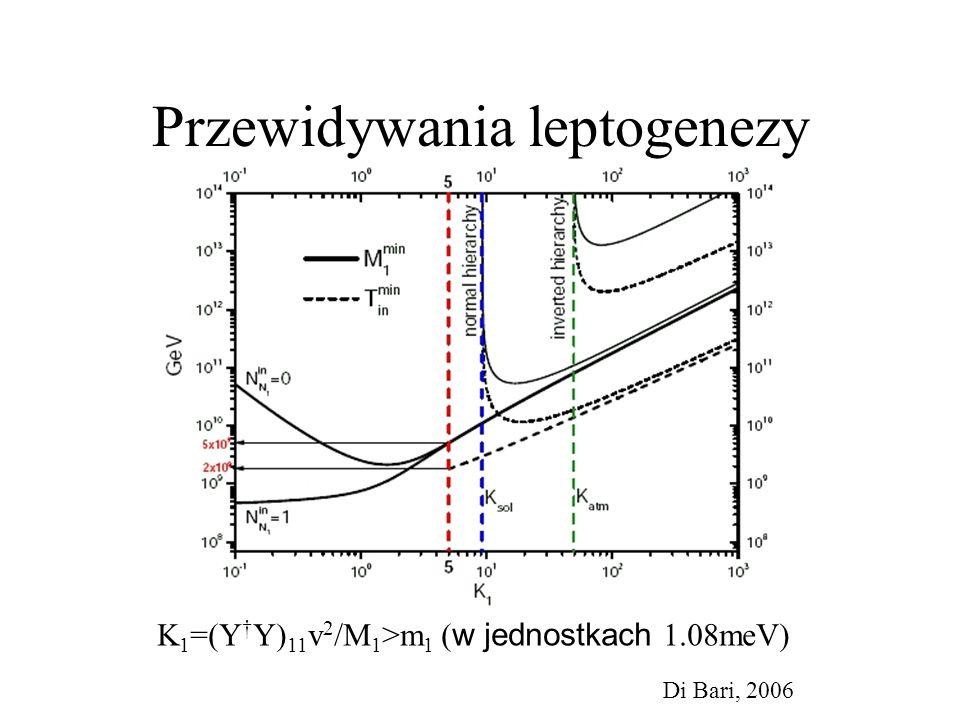 Przewidywania leptogenezy