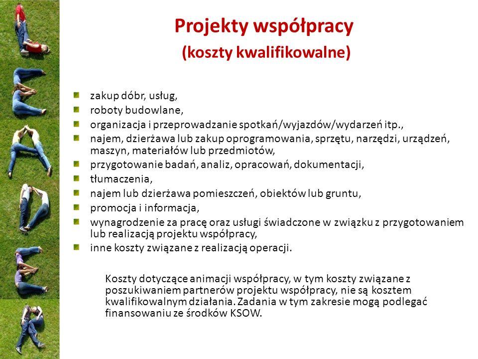 Projekty współpracy (koszty kwalifikowalne)