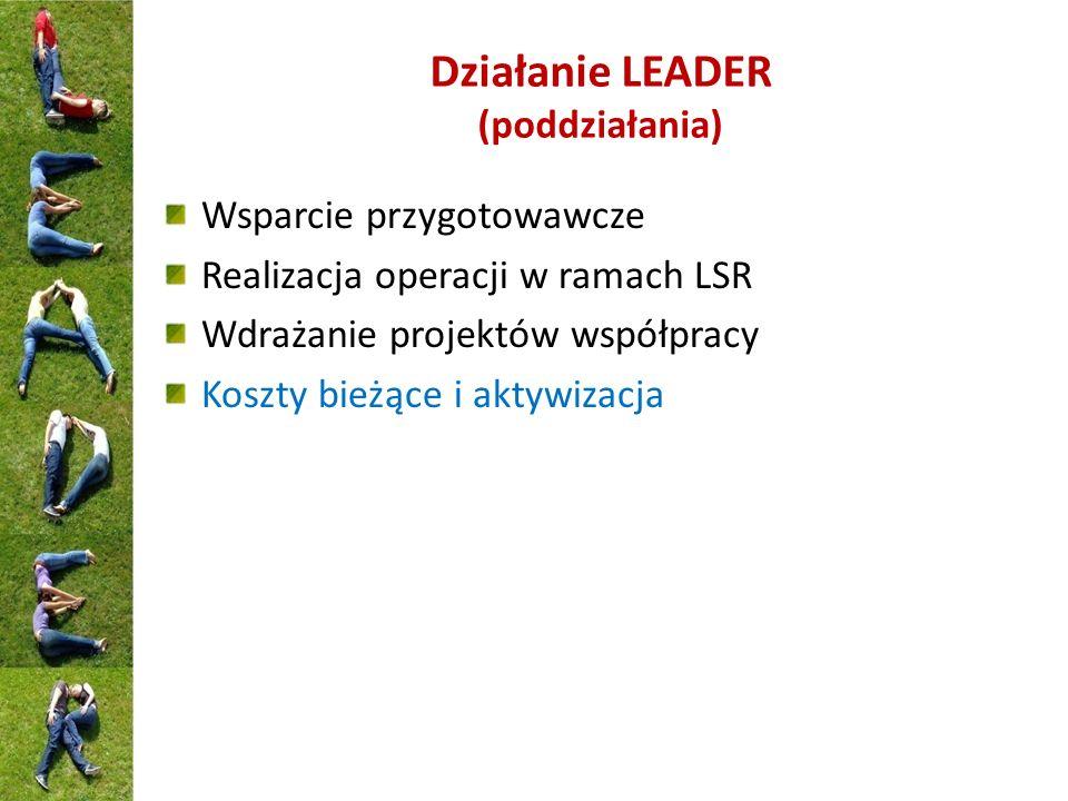 Działanie LEADER (poddziałania)