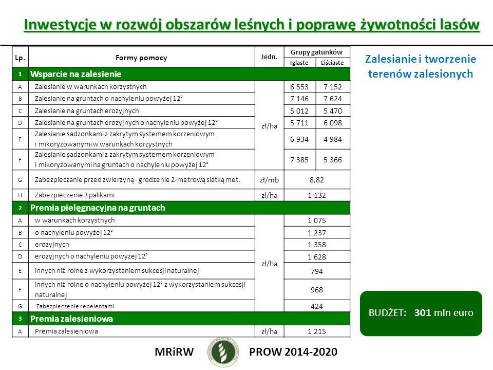 Inwestycje w rozwój obszarów leśnych i poprawę żywotności lasów