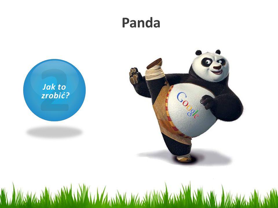 Panda 2 Jak to zrobić 1 Czym jest SEO
