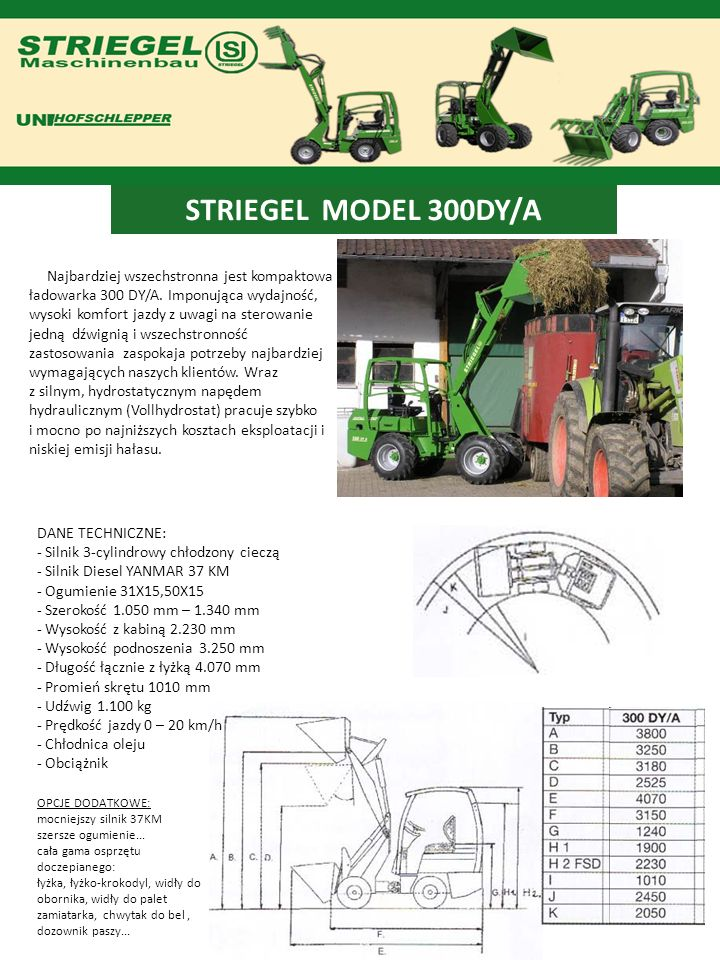 STRIEGEL MODEL 300DY/A