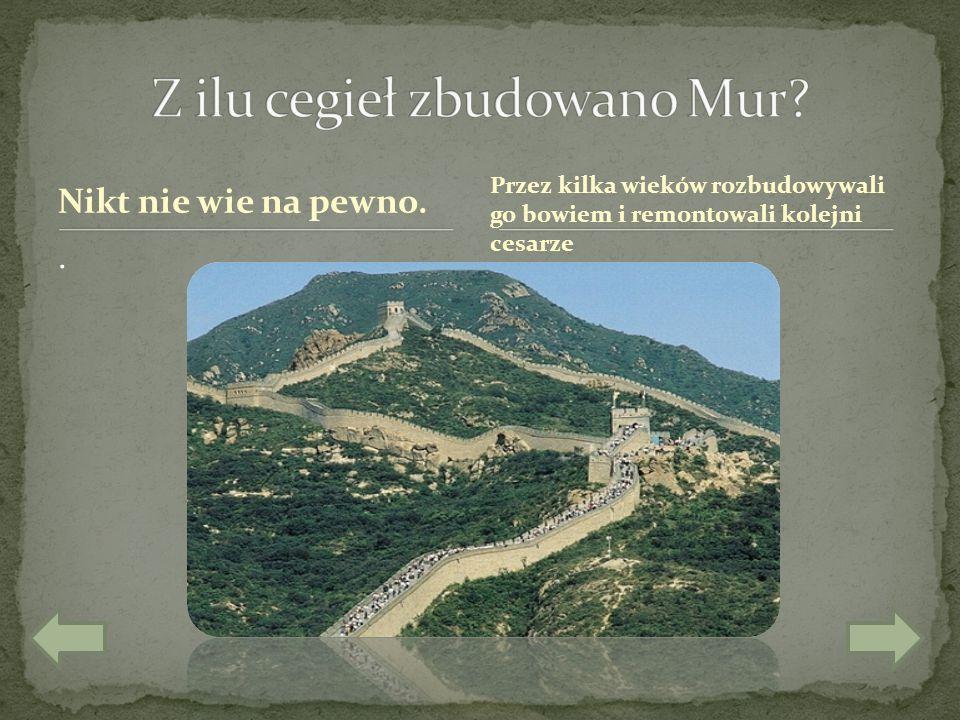 Z ilu cegieł zbudowano Mur