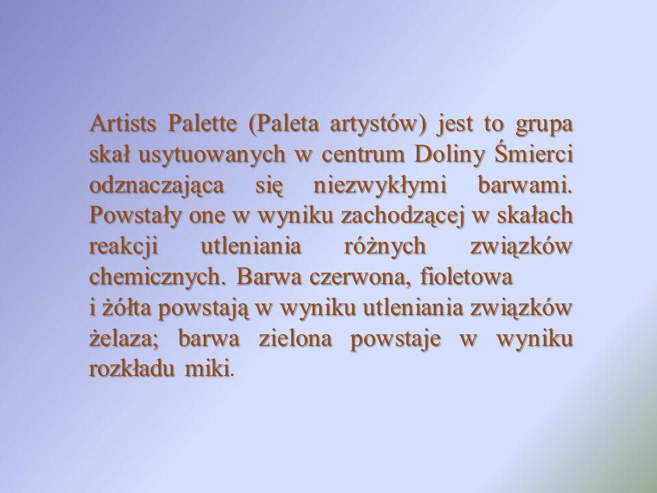 Artists Palette (Paleta artystów) jest to grupa skał usytuowanych w centrum Doliny Śmierci odznaczająca się niezwykłymi barwami. Powstały one w wyniku zachodzącej w skałach reakcji utleniania różnych związków chemicznych. Barwa czerwona, fioletowa